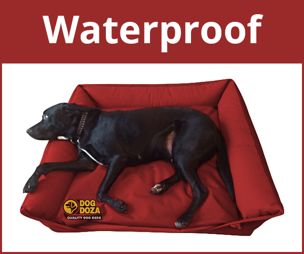 Waterproof Dog Beds